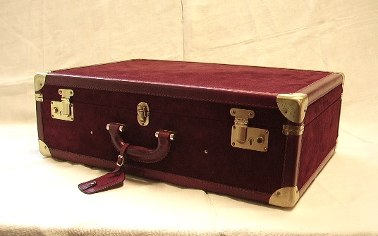 Picture of suitcase n°13