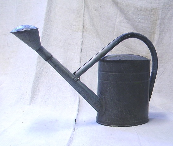 Picture of watering caN 4
