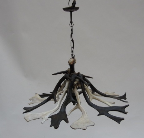 Picture of Antlers chandelier - mod 11