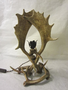 Picture of fallow deer antler table lamp n° 5