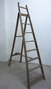 Picture of hight ladder n° 1