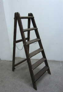 Picture of Short Ladder n° 3
