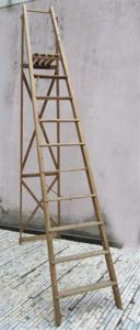 Picture of hight ladder n° 11
