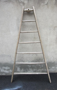 Picture of hight ladder n° 13