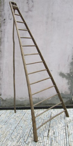Picture of hight ladder n° 17