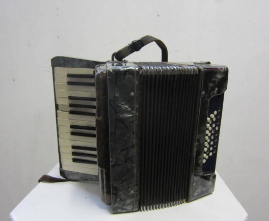 Picture of Accordion n° 1