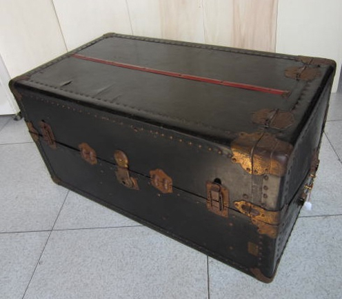 Picture of Trunk n° 203