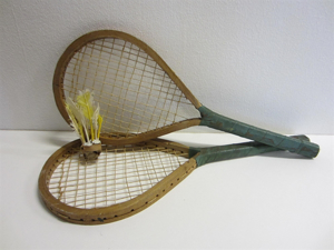 Picture of Badminton