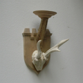 Picture of White Roe deer antlers with skull wall lamp n° 18