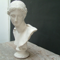Picture of Plaster cast bust sculpure  Arles' Athena by Praxiteles
