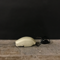 "Picture of Siemens ""Grillo"" telephone"