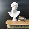 Immagine di Busto in gesso Atena di Arles di Prassitele