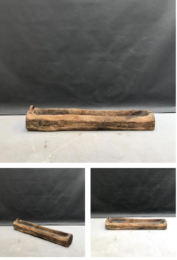 Immagine di mangiatoie scavate in tronchi