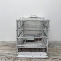 Picture of Big white bird cage