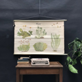 Picture of Woodland plants school posters