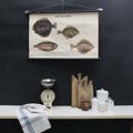 cartello didattico n° 56 pesci marini tafel IV cm 86,5 x h 57