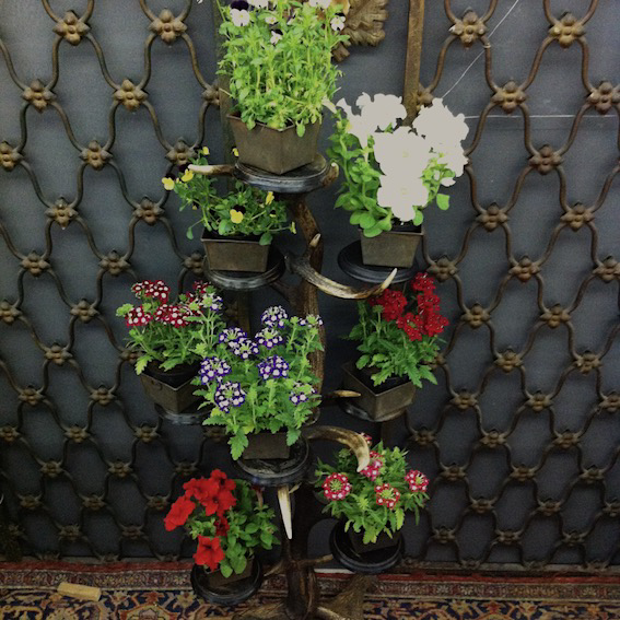 Picture of Flower stand in antlers and wood